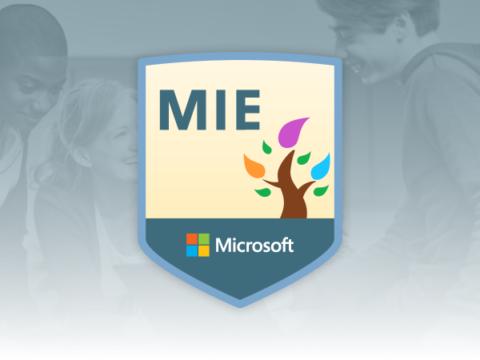 Microsoft Teacher – Nivelul 1